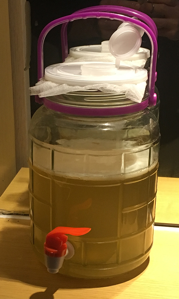 Home Brew Kombucha Starter Kit
